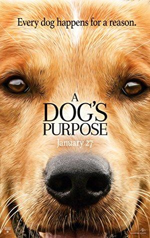 Can Dostum – A Dog's Purpose 2017 Türkçe Dublaj izle