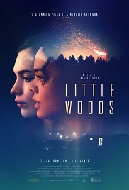 Little Woods 1080p full tek part izle