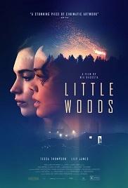 Little Woods 1080p full tek part izle